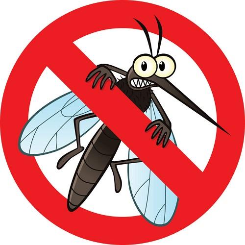 Đuổi muỗi – diệt muỗi