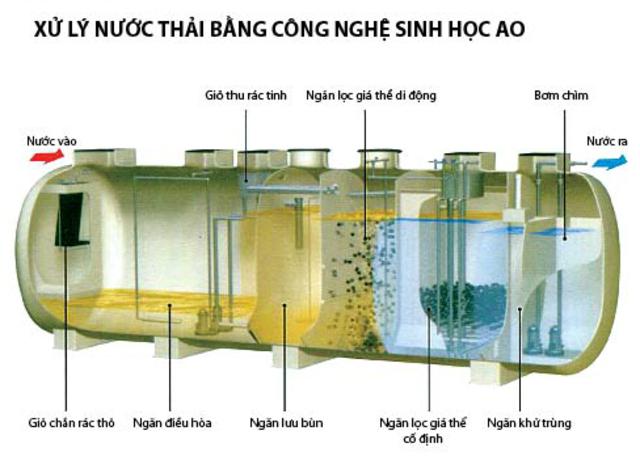 cac-phuong-phap-xu-ly-nuoc-thai-bang-phuong-phap-sinh-hoc6