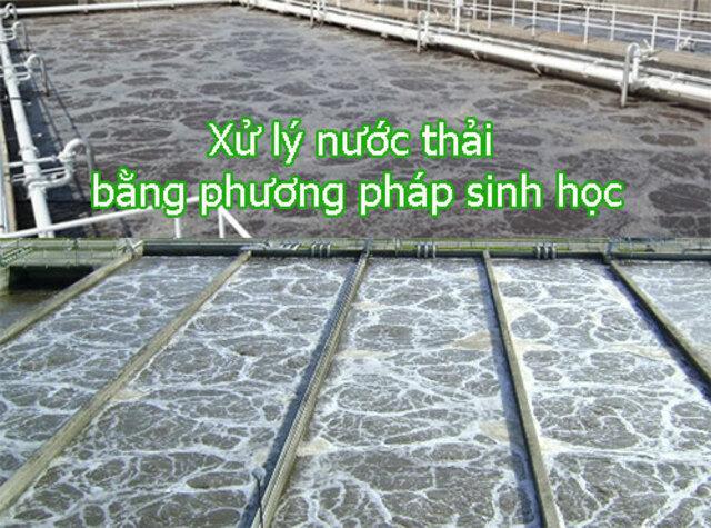 cac-phuong-phap-xu-ly-nuoc-thai-bang-phuong-phap-sinh-hoc7